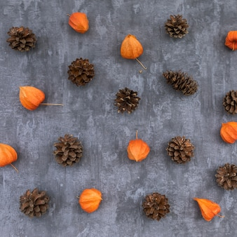 Top view autumn concept with pine cones