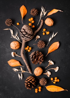 Top view autumn decoration with pine cones and leaves