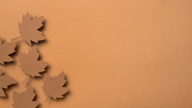 Вид сверху осенние листья ассортимент с копией пространства