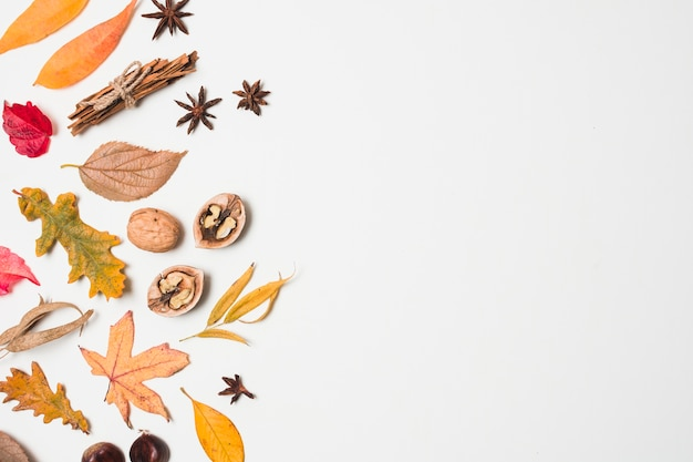 Top view autumn leaves copy space