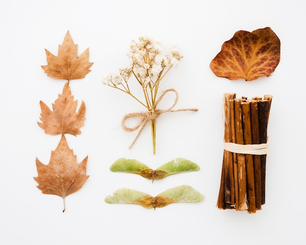 Top view autumn leaves flat lay