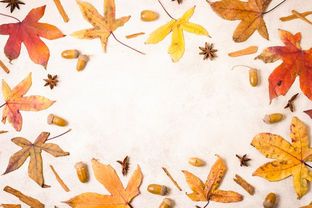 Top view of autumn leaves with acorns and copy space