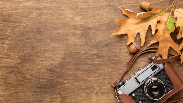 Top view of autumn leaves with camera and copy space