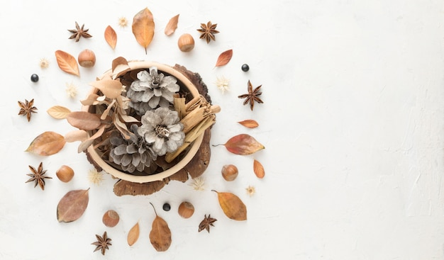 Top view of autumn leaves with pine cones and copy space