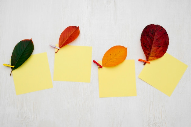 Top view of autumn leaves with sticky notes