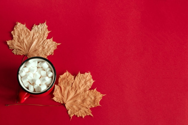 Top view autumn maple leaves and cup with marshmallows copy space background