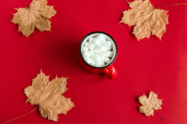 Top view autumn maple leaves and cup with marshmallows