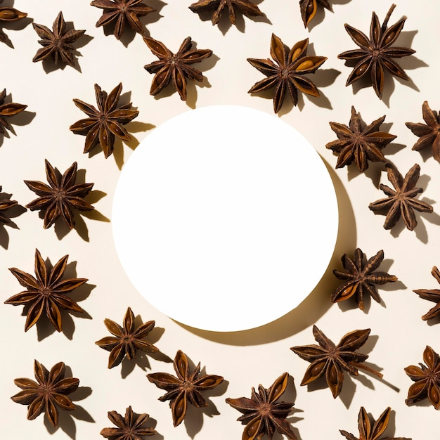 Top view of autumn star anise with paper circle