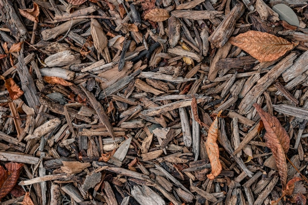 Top view of bark wood chips with dry autumn leaves