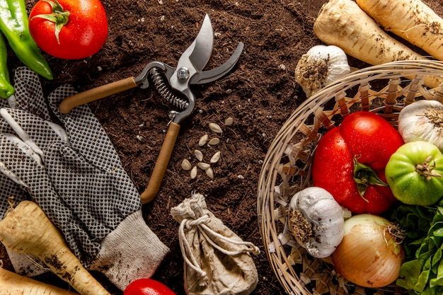 Top view of basket of veggies with scissors