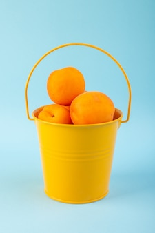 A top view basket with apricots sweet fresh mellow fruits inside yellow basket isolated