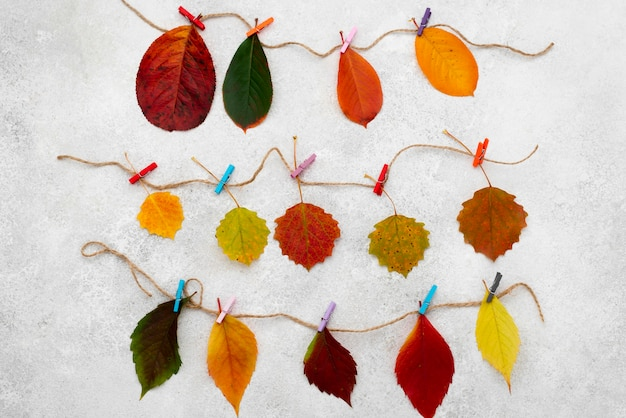 Top view of beautiful autumn leaves on strings