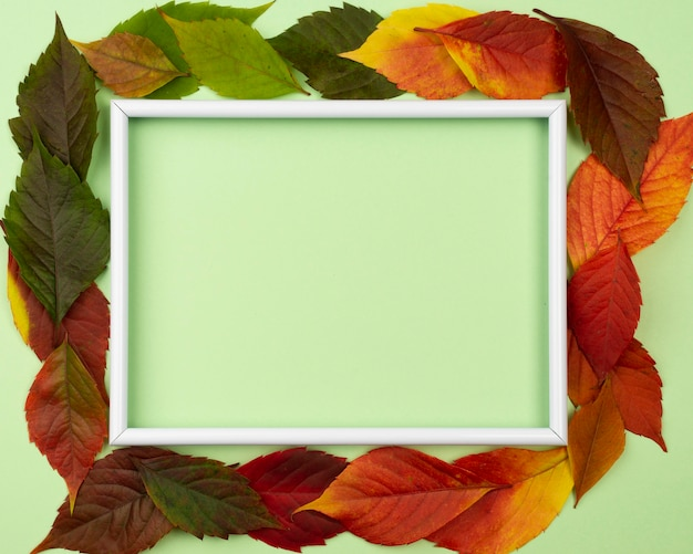Top view of beautiful autumn leaves with copy space and frame