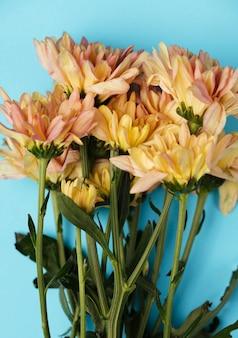Вид сверху красивые цветы на синем фоне Бесплатные Фотографии