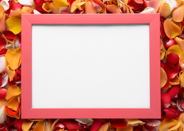Top view of beautiful flowers with blank frame