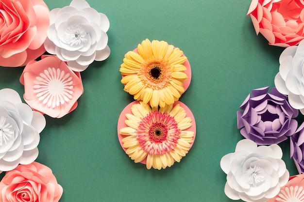 Vista dall'alto di bellissimi fiori per la festa della donna