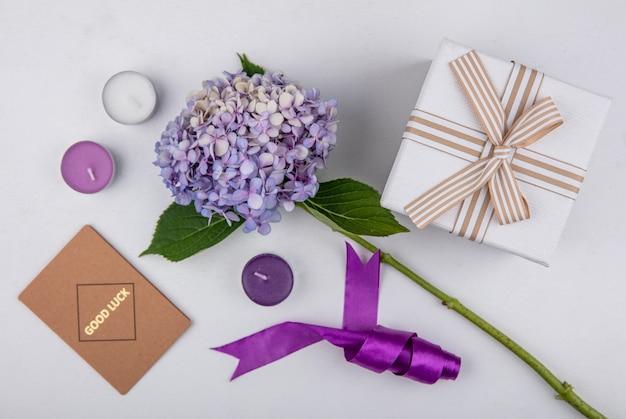 Vista dall'alto del bellissimo fiore lilla con foglie con confezione regalo su sfondo bianco