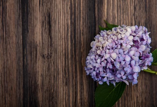 Vista dall'alto del bellissimo fiore lilla con foglie su uno sfondo di legno con spazio di copia