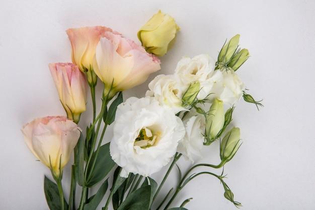 Vista dall'alto di bellissime rose bianche e gialle con foglie su sfondo bianco