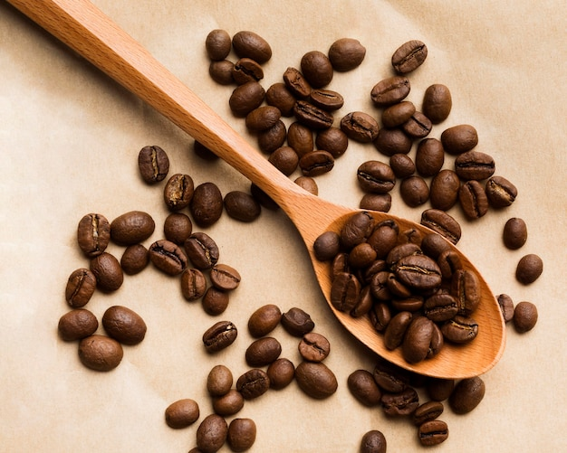 紙の背景に平面図のブラックコーヒー豆の品揃え