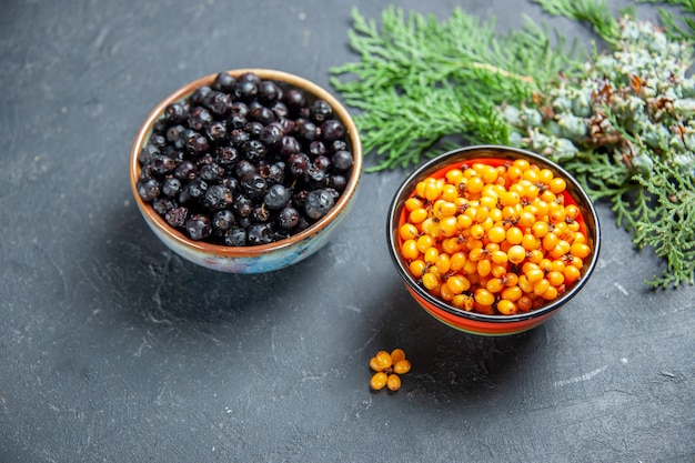 Top view black currant sea buckthorn in bowls pine branch on dark surface
