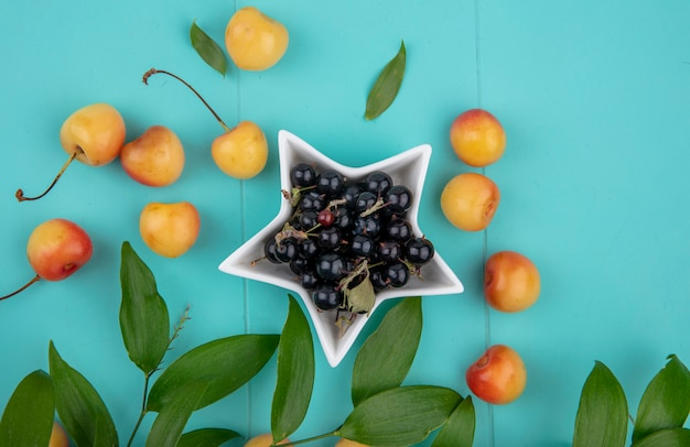 Top view of black currant with white sweet cherries with leaf branches on a turquoise surface