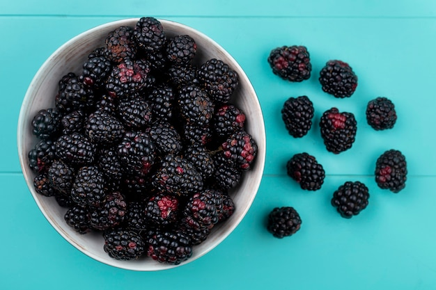 Top view of blackberry in a bowl on a light blue surface