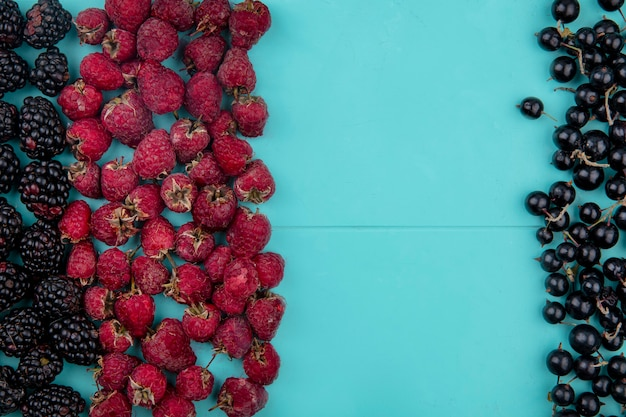 Top view of blackberry with raspberries and black currants on a light blue surface