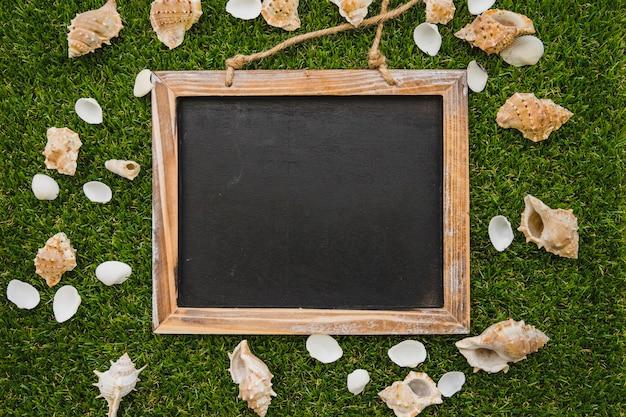 Top view of blank blackboard with seashells
