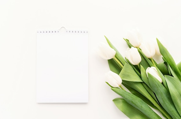 Top view of blank calendar for mock up design and white tulips. spring concept.