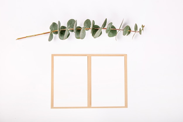 Top view blank greeting card plants white background