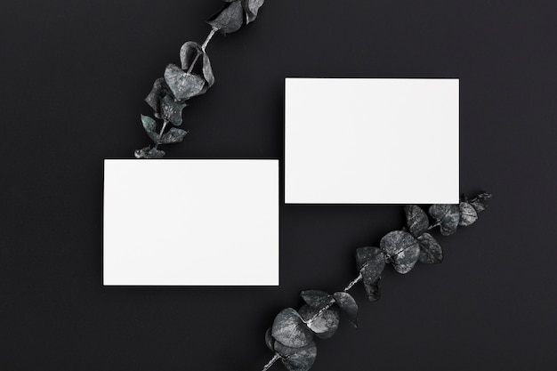 Top view blank paper business cards concept