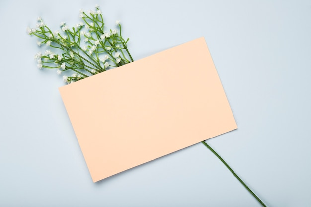 Top view blooming flowers with card