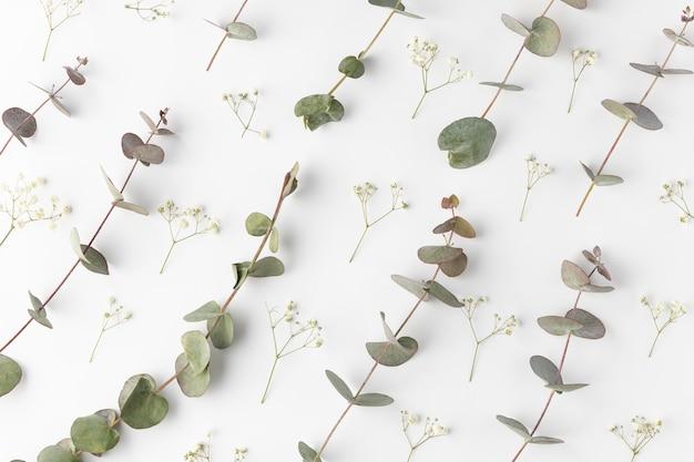 上面図咲く花