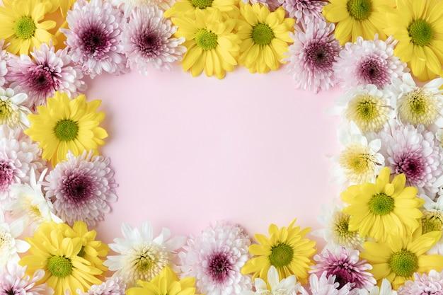 Top view blooming flowers