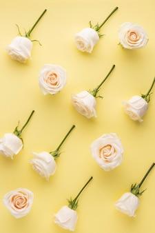 Вид сверху цветущих роз