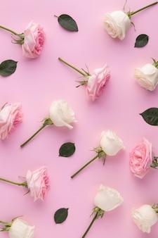 上面図咲くバラ
