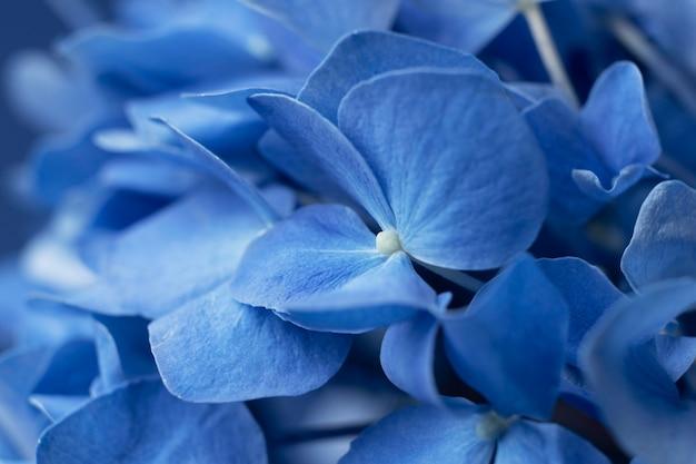 花のクローズアップと上面図青い月曜日のコンセプト構成