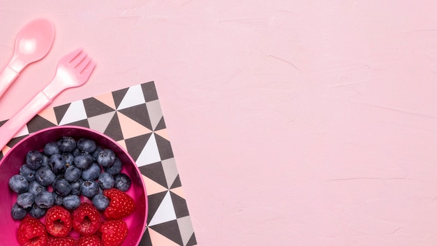 Top view of blueberries and raspberries for baby food with copy space