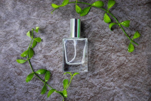 Top view of bottle of perfume surrounded with green leaves