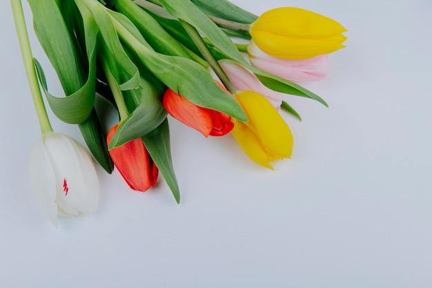 Vista dall'alto di un mazzo di fiori colorati tulipano isolato su sfondo bianco con spazio di copia