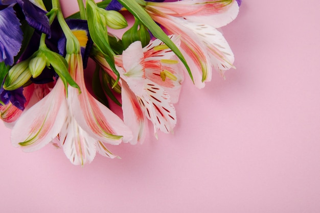 Top view of a bouquet of dark purple and pink color iris and alstroemeria flowers on pink background with copy space