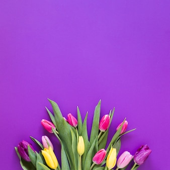 Top view bouquet of tulip flowers on violet copy space background