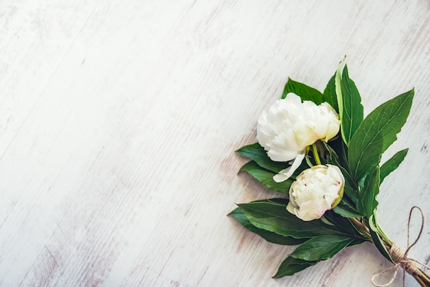 Top view of a bouquet of white peonies flowers over white wooden rustic , copyspace.