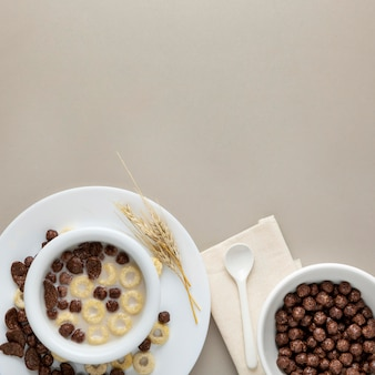 Top view of breakfast cereals in bowl with milk and copy space