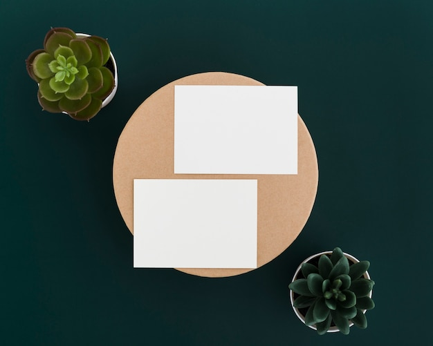 Top view business cards surrounded by plants