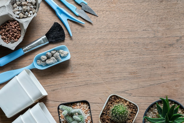 Top view of cactus and mini set gardening tools on wooden table background, copy space.