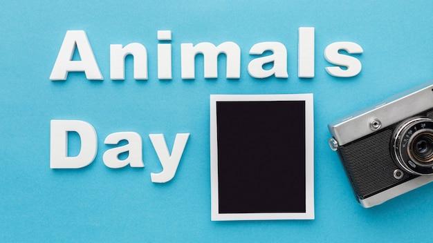 Vista dall'alto della fotocamera con foto per la giornata degli animali