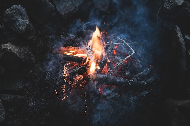 Top view of a campfire in the woods in twilight