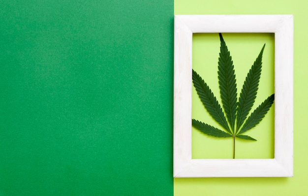 Top view of cannabis leaf in white frame on paper background with copy space